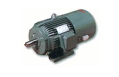 YVP(YTP)系列变频雷火官网下载电机